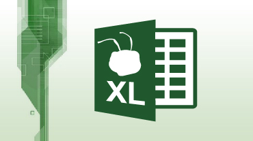 Logo Ant XL