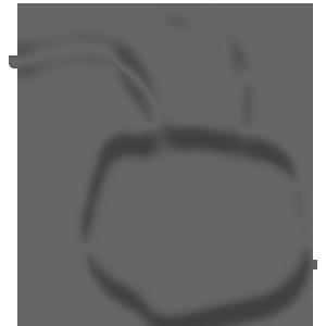 Icon Ant head grey